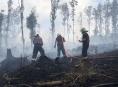 Hasiči v Olomouckém kraji likvidovali požár lesa v těžce přístupném terénu