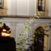 Halloween a zámecká strašidla na Úsově    zdroj foto: VMŠ