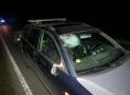 Motoristům zkomplikovala jízdu na Šumpersku opět lesní zvěř