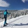 Na hory doveze lyžaře nový skibus     zdroj foto: OLK - V. Holubová