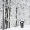 O víkendu opět startuje JeLyMan    zdroj foto: R. Valoušek