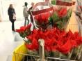 Vánoční charitativní akce vynesla přes tři miliony korun