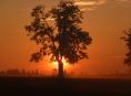 Lesy České republiky mění pravidla pronájmu honiteb