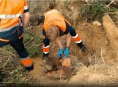 VIDEO! Záchrana zavaleného muže stromem