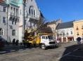 V Šumperku přesadili lípy vysazené u radnice v roce 1997