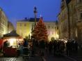 Město Šumperk už vybralo vánoční strom