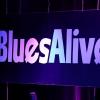 Šumperské Blues Alive začíná ve čtvrtek    zdroj foto: archiv