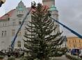 FOTO: Začalo zdobení vánočního stromu v Šumperku