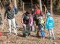 Pokračuje obnova lesa po kalamitách