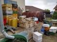 Potravinářská inspekce zjistila stovky kilogramů mořských živočichů na dvoře večerky