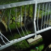 Motorista zdemoloval kovové zábradlí v Postřelmůvku