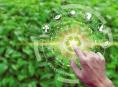 Univerzita hledá koordinátora udržitelného rozvoje
