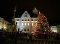 Vánoční strom v Šumperku bude
