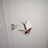 prokopnuté dveře toalety na autobusovém nádraží   zdroj foto:mus