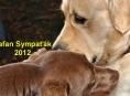 Soutěž - HAFAN SYMPAŤÁK 2012