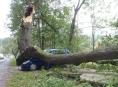 Hasiči vyjížděli k popadaným stromům