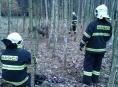 Litovelští hasiči vyprošťovali daňka zamotaného v drátech