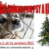 Šumperská vánoční sbírka dobrot pro psy a kočky v útulcích zdroj LOZ