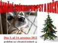 Šumperská vánoční sbírka dobrot pro psy a kočky v útulcích