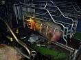 Kvůli závadě na elektroinstalaci hořela chovna prasat