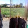 Prodejci borůvek své zákazníky šidí   zdroj foto:coi
