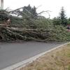Desítky výjezdů hasičů v Olomouckém kraji kvůli počasí    zdroj foto:HZS Ok