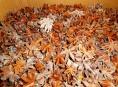 Z Číny na český trh směřovalo 750 kilo plesnivého badyánu