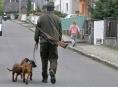 Městská honitba v Šumperku má staronového nájemce