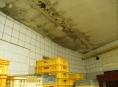 Plísně byly úplně všude. Inspekce uzavřela pekárnu na Prostějovsku
