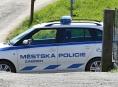 Vandal v Zábřehu polámal 12 stromků