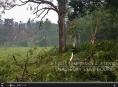 VIDEO: Následky silné bouřky na Šumpersku a Jesenicku