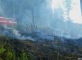 V kraji se zvýšil počet požárů trávy a lesních porostů