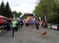 Běžci na Šumavě uzavřou letošní sérii RP - Horská výzva