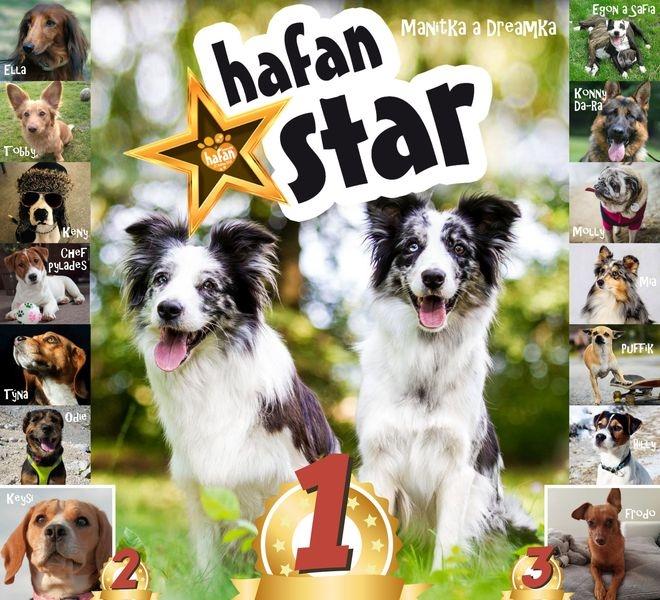 Hafan star finalisté zdroj: VMŠ