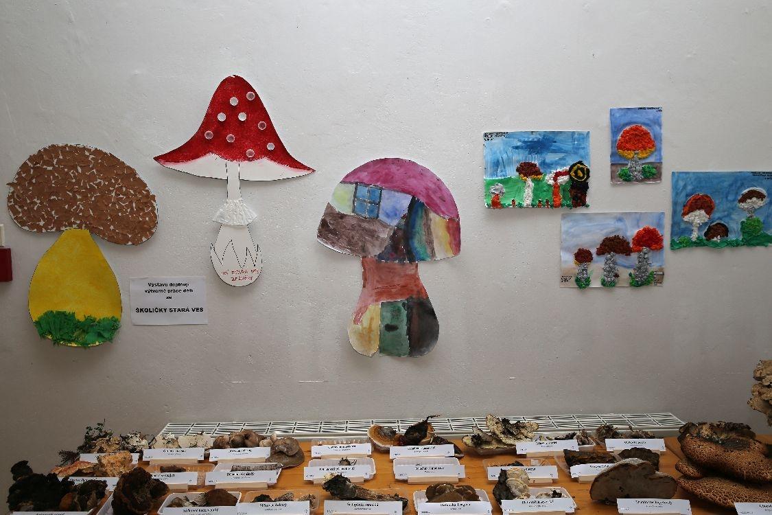 Šumperk - výstava hub 2017 - zdroj foto: archiv sumpersko.net