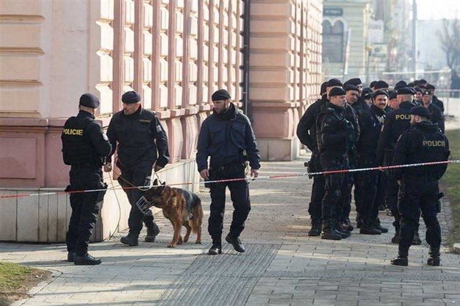 Olomouc - akce oznámením o uložení bomby na vrchním soudě v Olomouci), na níž je zachycen policejní pes Aldo, který se účastnil nejen dnešního opatření, ale i zmiňovaného opatření v souvislosti s anonymním oznámením o uložení bomby na vrchním soudě v Olomouci zdroj foto: PČR