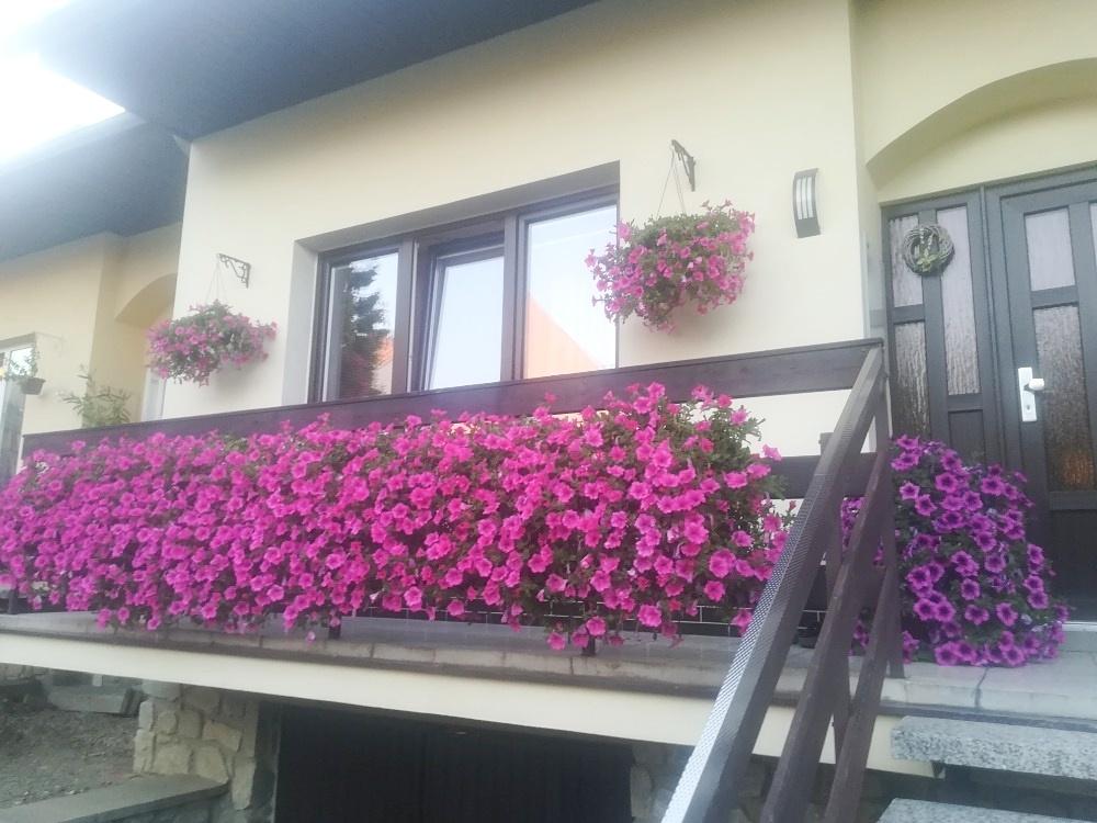 Nejkrásnější terasa rodinného domu paní Kepprtová zdroj foto: muz